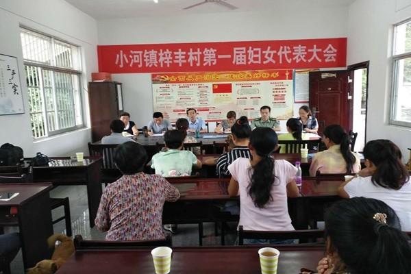 石台县小河镇梓丰村召开第一次妇女代表大会