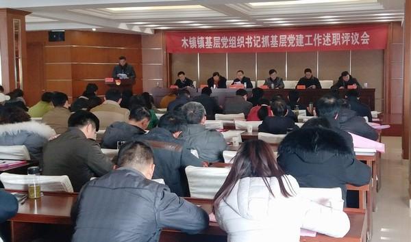 """青阳县严把""""三关""""考准考实基层党组织书记抓党建成效"""