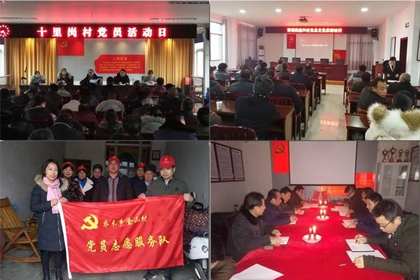 全县基层党组织积极开展1月份党员活动日活动