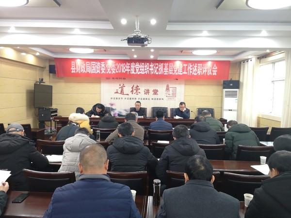县财政局(国资委)党委召开2018年度党组织书记抓基层党